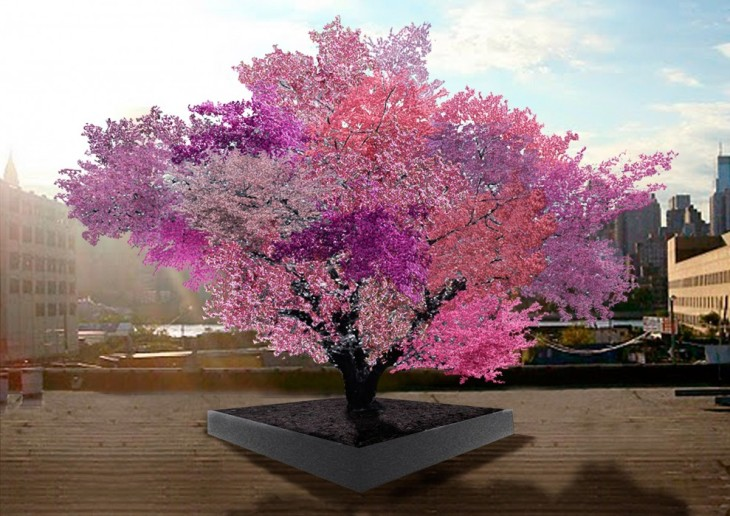 Tree of 40 Fruit